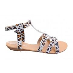 Gladiatorke gepard 009